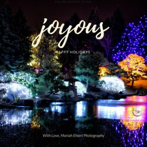 Denver holiday lights and well wishes from Mariah Ehlert Photography